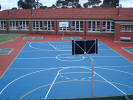 Multi Sport cushioned acrylic court